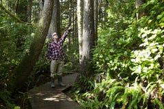 Isla de Vancouver provincial de la arboleda de la catedral del parque de MacMillan Fotografía de archivo