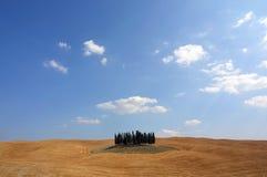 Isla del árbol Imágenes de archivo libres de regalías