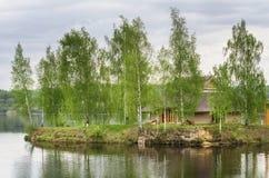 Isla del abedul sobre el agua Fotografía de archivo