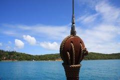 Isla del canguro, Australia Fotos de archivo libres de regalías