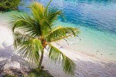 Isla del Caribe parqueada barco de madera natural de la playa del océano de la cola larga de la foto Fondo claro de la palma del  Foto de archivo libre de regalías