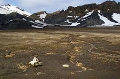 Isla del engaño, Ant3artida Foto de archivo