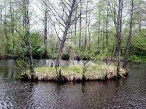 Isla del lago Imagen de archivo