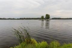 Isla del lago rice Imagen de archivo libre de regalías