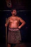 ISLA DEL NORTE, NUEVO SELANDIA 17 DE MAYO DE 2017: Ciérrese para arriba de un hombre del líder de Tamaki Maori con la cara tradic Foto de archivo libre de regalías