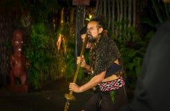 ISLA DEL NORTE, NUEVO SELANDIA 17 DE MAYO DE 2017: Hombre maorí con la cara tradicionalmente tatooed en vestido tradicional en Ma Fotografía de archivo