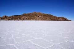 Isla del Pescado на Salar de Uyuni, Боливии Стоковое Изображение RF