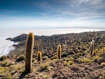 Isla del Pescado Stockfoto