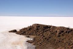 Isla del Pescado, Salar DE Uyuni, Bolivië Stock Afbeelding
