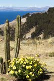 Isla del Sol   Royalty-vrije Stock Afbeelding