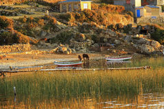 Isla del Sol in Bolivië Zuid-Amerika stock foto's