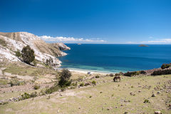 Isla del Sol - Bolivia Royalty Free Stock Images