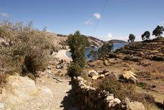 Isla del sol op Titicaca-meer, Bolivië Stock Fotografie