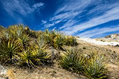 Isla del Sol sur le lac Titicaca, Bolivie. Photo stock