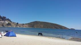 Isla del Sol Titicaca Stockbild