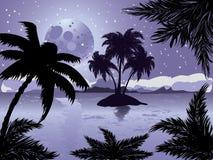 Isla del trópico de la noche Imagen de archivo libre de regalías
