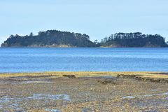 Isla detrás de rocas del mar y de la marea baja Fotografía de archivo libre de regalías