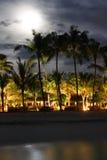 Isla en el océano, Maldives noche Luna sobre las palmeras imagen de archivo libre de regalías