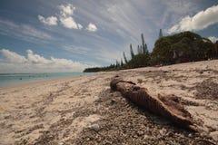 Isla en el Pacífico Fotos de archivo libres de regalías