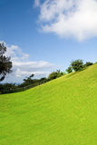 Isla grande, Hawaii Fotografía de archivo libre de regalías