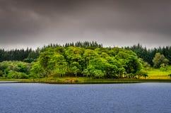 Isla idílica en el lago con los árboles verdes, Escocia fotografía de archivo libre de regalías