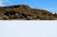 Isla Incahuasi o Isla del Pescado, Rocky Outcrop in mezzo agli appartamenti del sale di Uyuni nel cantone di Caquena della Bolivi immagini stock
