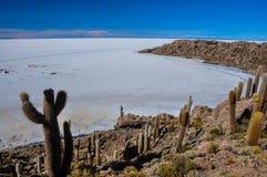Isla Incahuasi (Pescadores), Salar de Uyuni, Βολιβία Στοκ φωτογραφία με δικαίωμα ελεύθερης χρήσης