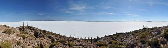 Isla Incahuasi (Pescadores), Salar de Uyuni, Bolivia Stock Images