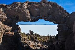 Isla Incahuasi (Pescadores), Salar de Uyuni, Bolivie Photos stock