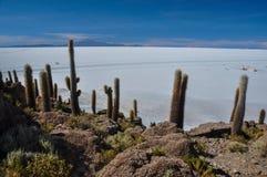 Isla Incahuasi (Pescadores), Salar de Uyuni, Bolivien Lizenzfreies Stockbild