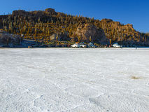 Isla Incahuasi on Salar de Uyuni Royalty Free Stock Photography