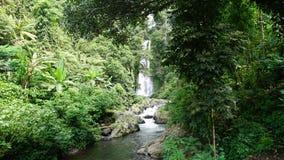 Isla Indonesia de Bali de la cascada Fotografía de archivo libre de regalías
