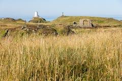 Isla larga de Llanddwyn de la hierba Fotografía de archivo