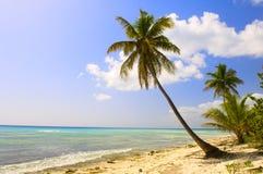 Isla maldiva Imagen de archivo libre de regalías