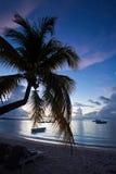 Isla Mauricio Foto de archivo