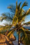 Isla mediterránea admitida fotografía Córcega Imágenes de archivo libres de regalías