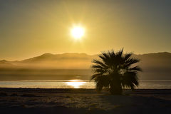 Isla mediterránea admitida fotografía Córcega Fotografía de archivo libre de regalías