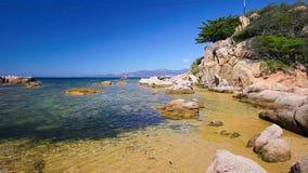 Isla mediterránea con los árboles de pino, Córcega, Francia almacen de metraje de vídeo