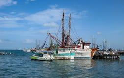 Isla Muerjes海岸线 免版税图库摄影