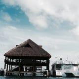 Isla Mujeres. Delfinario Stock Photos