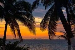 Isla Mujeres island Caribbean beach sunset. Palm trees Riviera Maya in Mexico Stock Photo