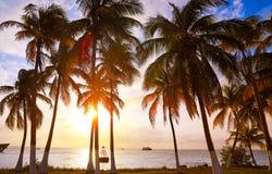 Isla Mujeres island Caribbean beach sunset. Palm trees Riviera Maya in Mexico Royalty Free Stock Photography