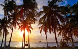 Isla Mujeres island Caribbean beach sunset. Palm trees Riviera Maya in Mexico Royalty Free Stock Photo