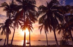 Isla Mujeres island Caribbean beach sunset Stock Photo