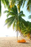 Isla Mujeres north beach tropical Palm trees Royalty Free Stock Photography