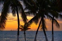 Isla Mujeres-zonsondergang van het eiland de Caraïbische strand stock afbeelding