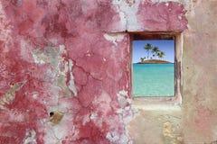 Isla rosada de las palmeras de la ventana de la pared de Grunge Imágenes de archivo libres de regalías
