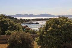 Isla St Margaret Imagen de archivo libre de regalías