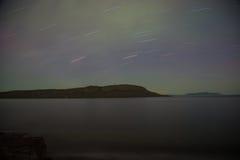 Isla Thunder Bay, Ontario, Canadá del caribú imagen de archivo