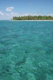 Isla tropical con las palmeras Imágenes de archivo libres de regalías